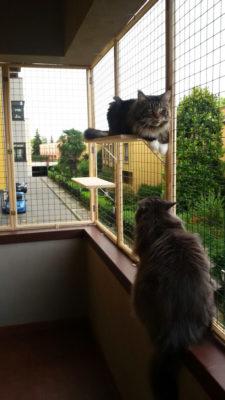 protezione per piccolo balcone